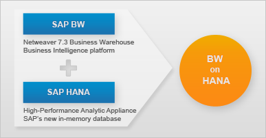 Sap Fico Server Access