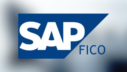 SAP FICO training